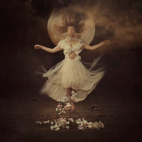 song of moonflower by brookeshaden