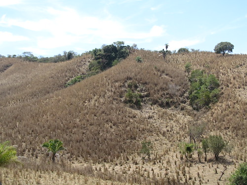 paisajes mexico tepic nayarit ciclismo montaña bicileta ciclismodemontaña cuarenteño 20140405