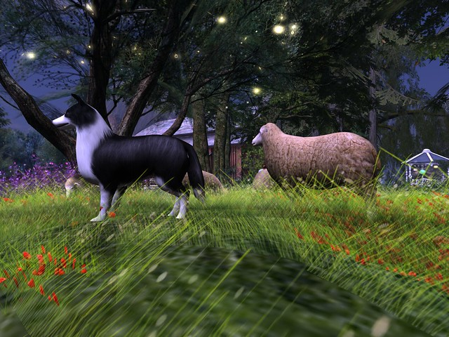 Crystal Gardens - Shep Tends the Sheep