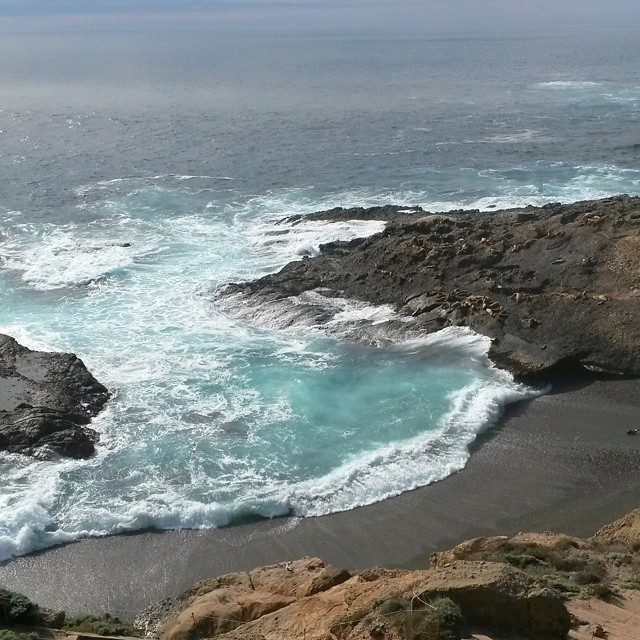 Point Lobos State Reserve, Carmen, Kalifornia #highway1