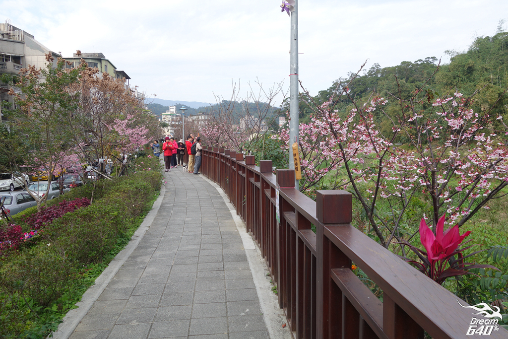 2015賞櫻-東湖樂活公園06
