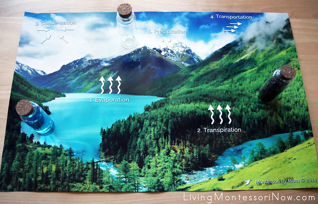 Placing Land, Water, Air Bottles on Poster