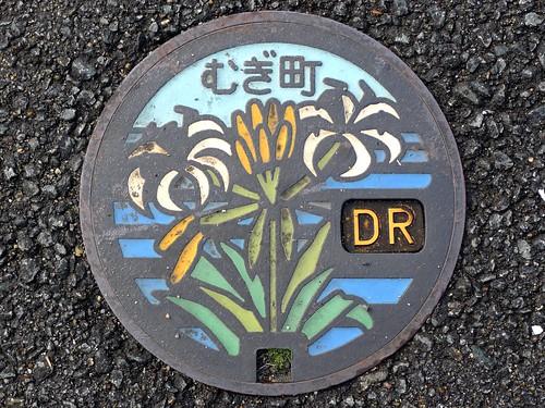 Mugi Tokushima, manhole cover (徳島県牟岐町のマンホール)