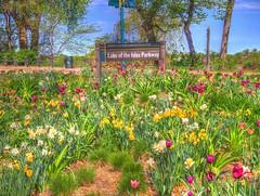 Spring in Minnesota 2016