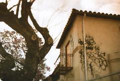 Porst SP Angelus Funeral Home