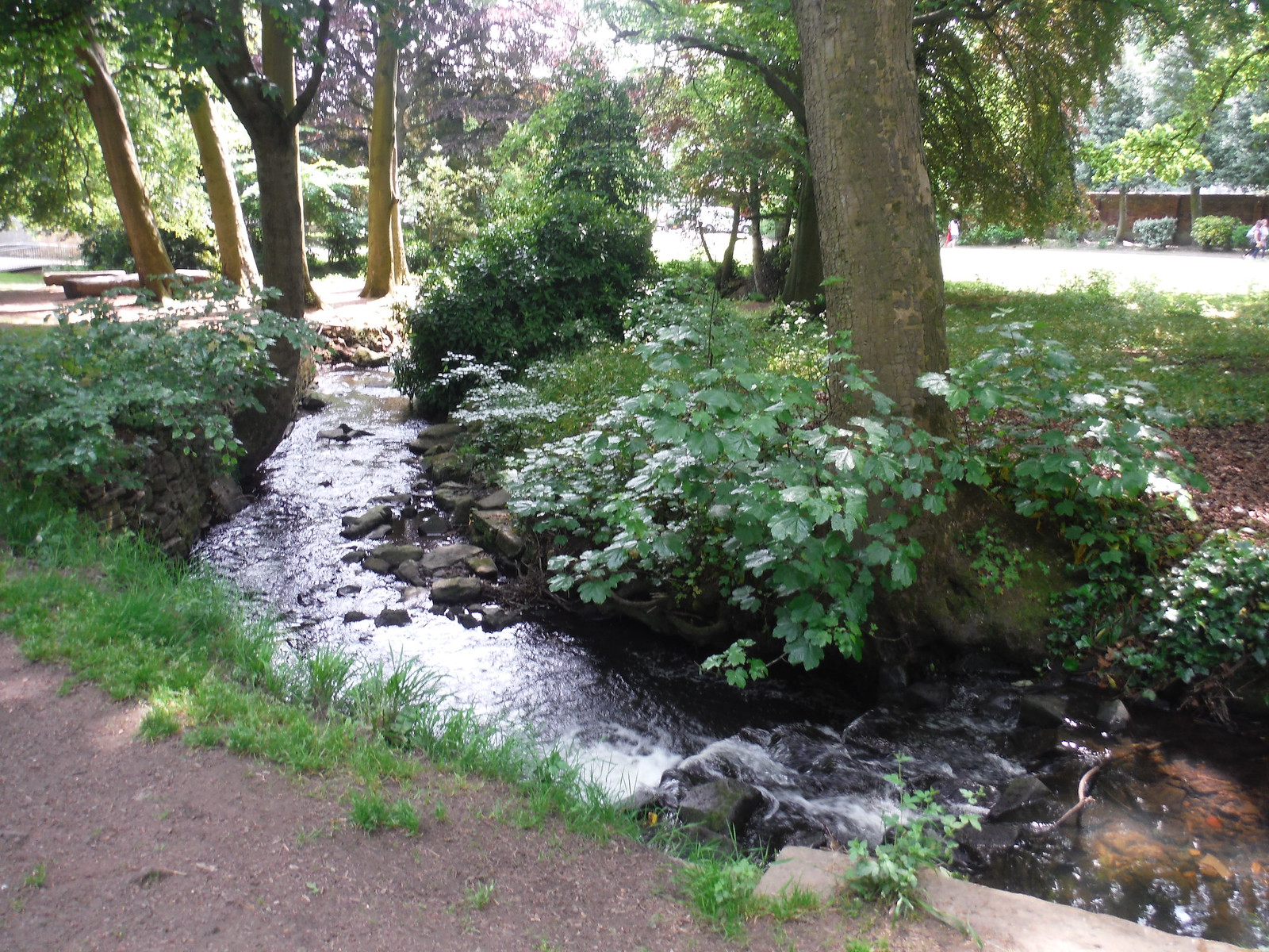 Porter Brook in Endcliffe Park SWC Walk 267 - Sheffield Circular (via Porter, Limb, Sheaf and Gleadless Valleys)