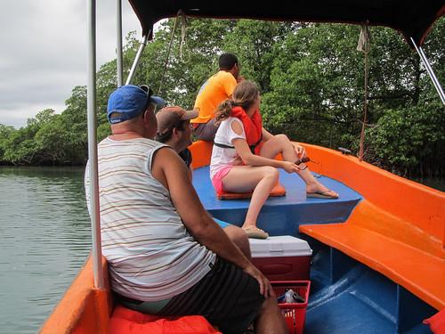 Bocas del Toro: à la recherche de  paresseux