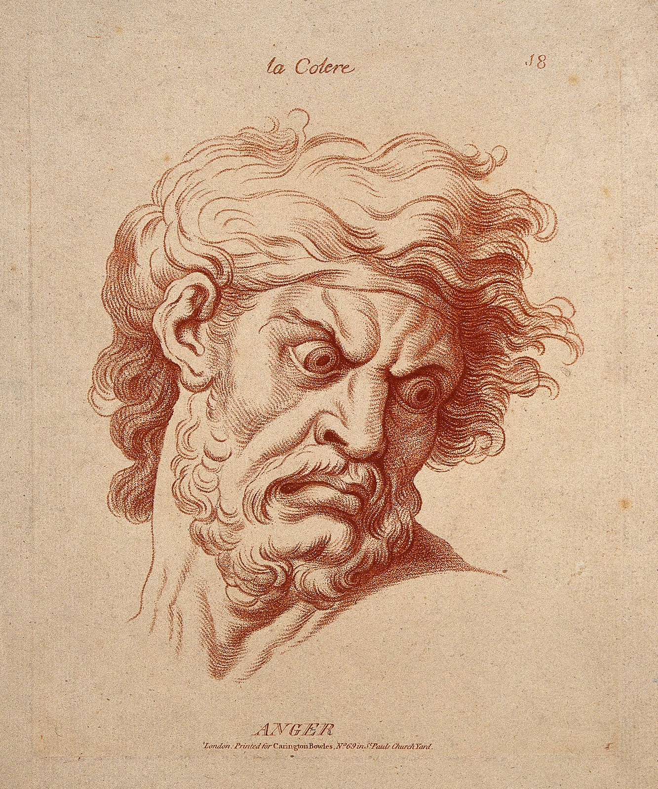 The face of a bearded man expressing anger. Etching in the crayon manner by W. Hebert, c. 1770, after C. Le Brun. Credit Wellcome Images