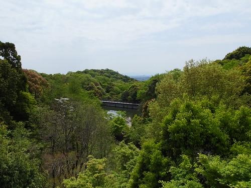 甲山森林公園にて (19)