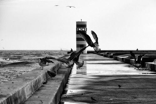Portugal, Porto, Foz by @uroraboreal