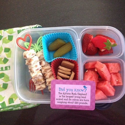 PB&J skewers (he's got a loose front tooth so he doesn't want to bite into anything) - he also picked all the skewers and picks out #kidslunch #easylunchboxes #lunchbox_love #smartkins #simplysweetscakestudio #funbites