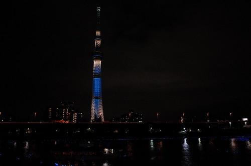Tokyo Hotaru Light Symphony 2013-29