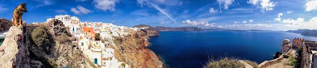 Oia, Santorini - Wall Dog!