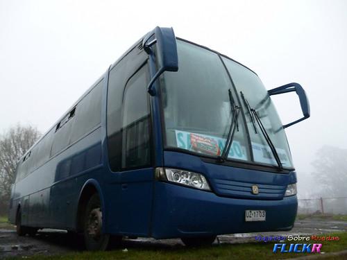 Buses Erbuc
