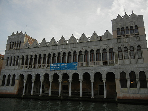 DSCN0557 _ Museo di Storia Naturale - Fondaco dei Turchi, Venezia, 11 October