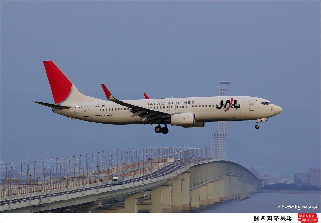 Japan Airlines - JAL JA317J-005