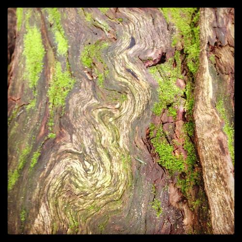 swirly patterns