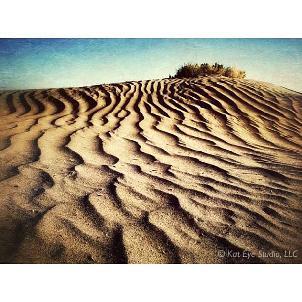 Christmas Valley Sand Dunes, Eastern Oregon.