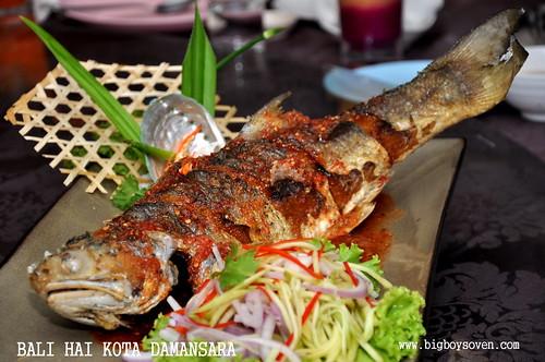 Bali Hai Kota Damansara 11