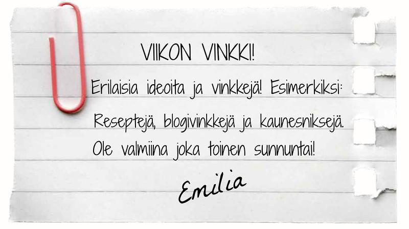 VIIKON VINKKI (nykyinen)