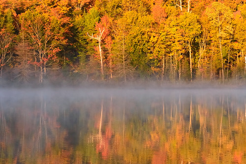 red sunlight mist lake ontario canada colour leaves photography dawn canoe change canoeing haliburton peterbowers