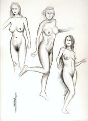 Aktstudien, weiblich
