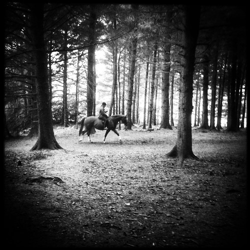 blackandwhite bw black contrast landscape mobilephotography iphoneography oggl mobiography