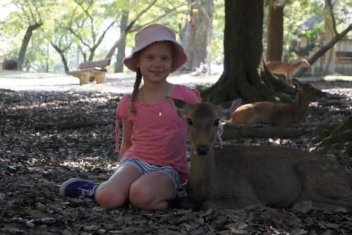 Nara Deer Park DSC03583