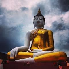 #Buddha and the approaching #rain