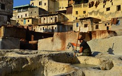 Tanneries 4
