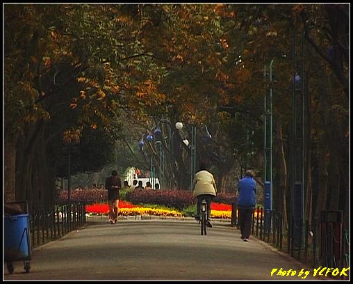 杭州 西湖 (其他景點) - 255 (在西湖十景之 蘇堤)