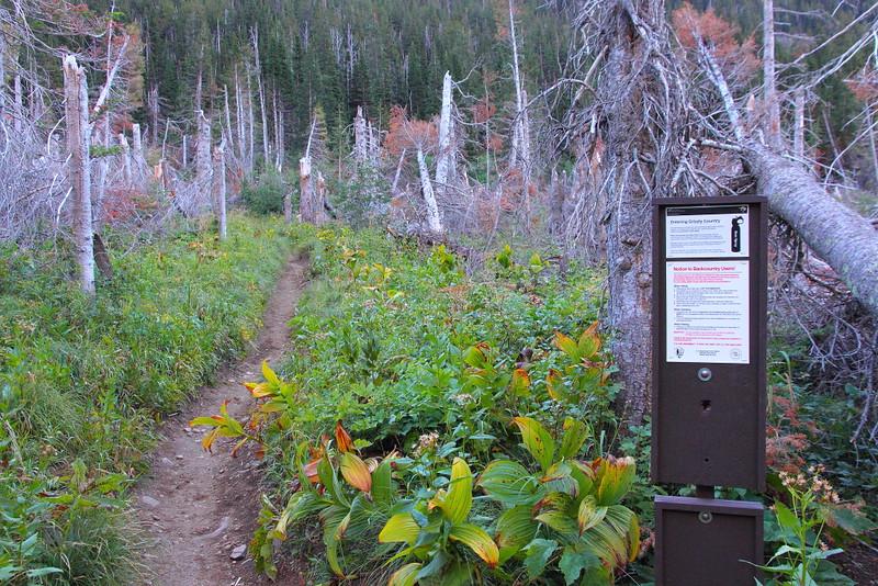 IMG_3696 Siyeh Pass Trail