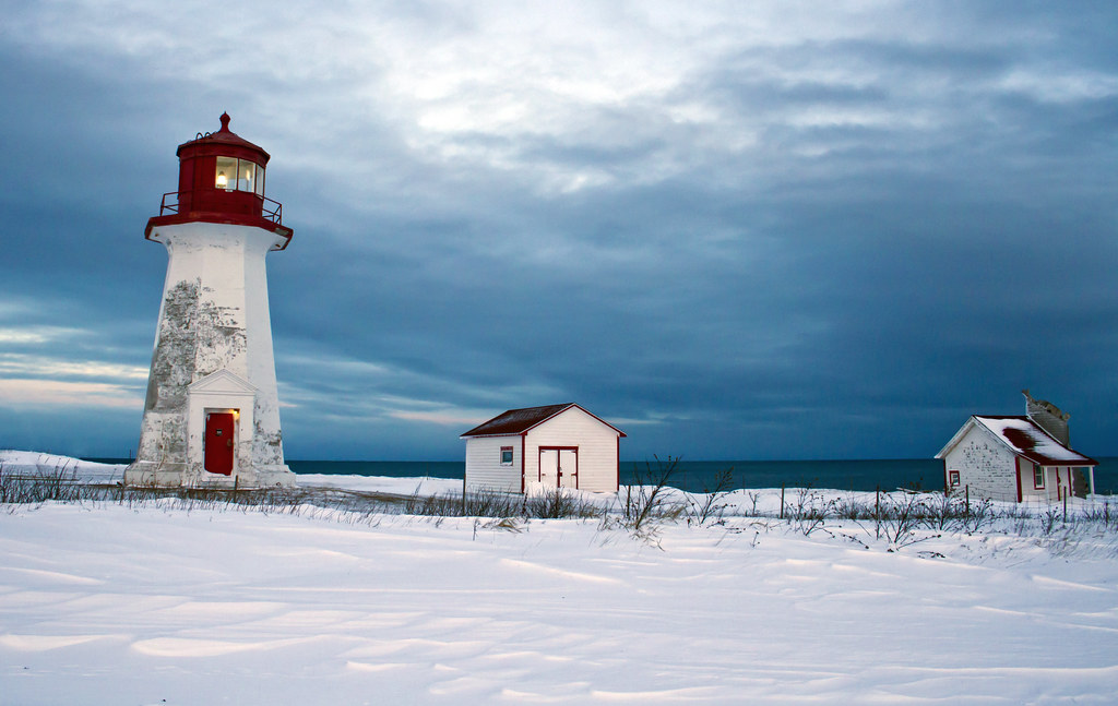 Standing strong in the winter storm. Gaspesie, Quebec, Canada