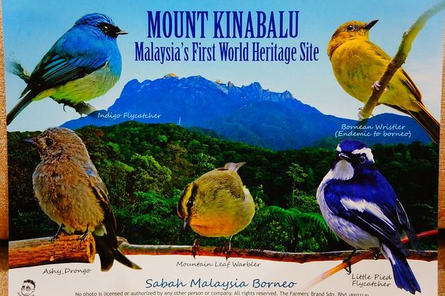 Sabah - Mount Kinabalu V3
