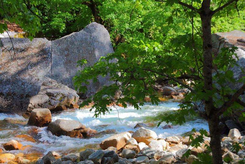 IMG_7040 Tenaya Creek