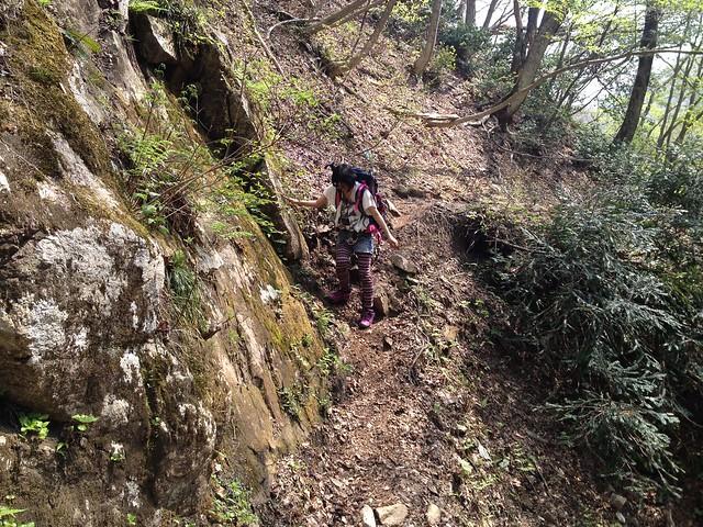 武奈ヶ岳 登山道