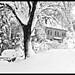 inverno by tozama