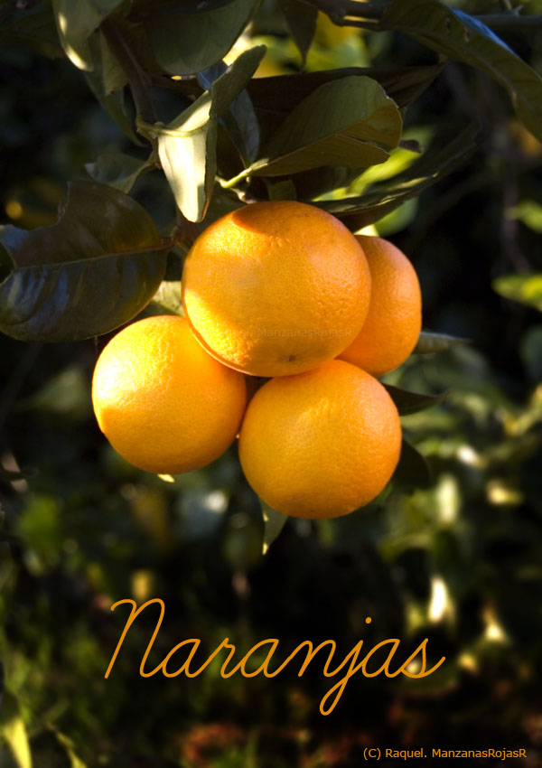 Naranjas. ManzanasRojasR
