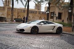 automobile(1.0), lamborghini(1.0), lamborghini aventador(1.0), wheel(1.0), vehicle(1.0), performance car(1.0), automotive design(1.0), lamborghini(1.0), lamborghini gallardo(1.0), land vehicle(1.0), luxury vehicle(1.0), sports car(1.0),