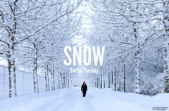 #TwitterTuesday: Snow | Tweet your favorite snow pictures from your Flickr account to @flickr and add #TwitterTuesday!