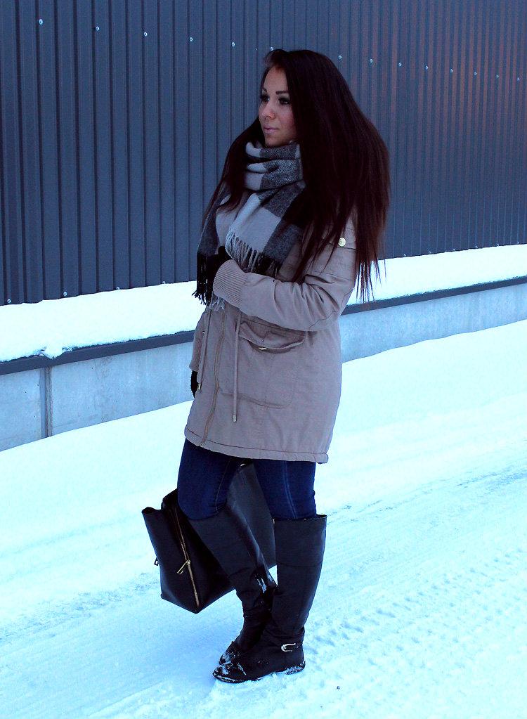 talvi 017