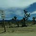 High Desert 65