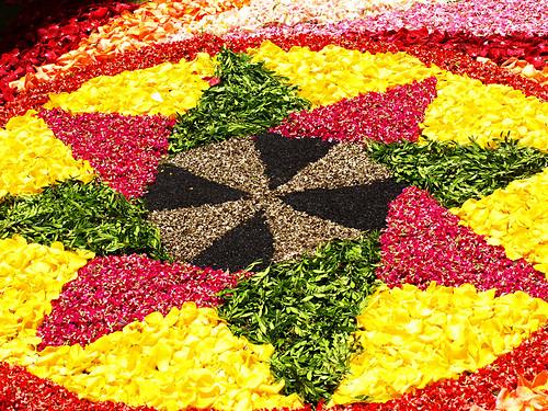 Flower Carpets, La Orotava, Tenerife