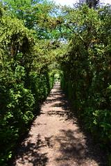 Vers la porte des jardins