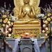 Buddha Temple in Sarnath