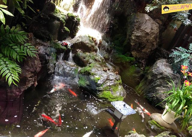 SASANOYUKI - tofu restaurant - koi pond