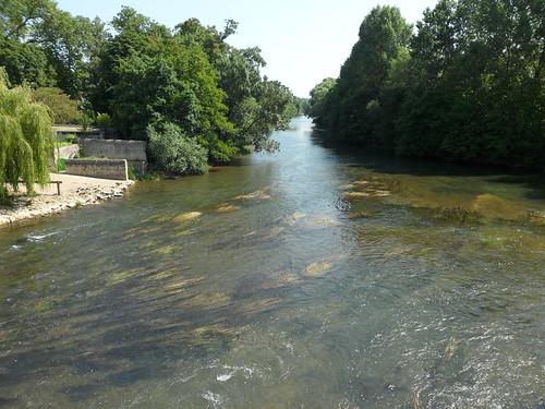 Rivière Le Clain 3