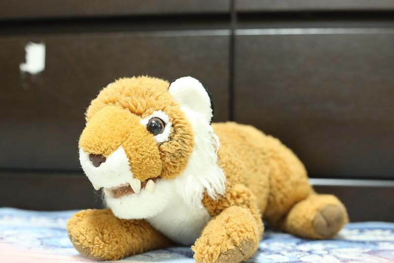 上野動物園でゲットして子供にとられたトラ