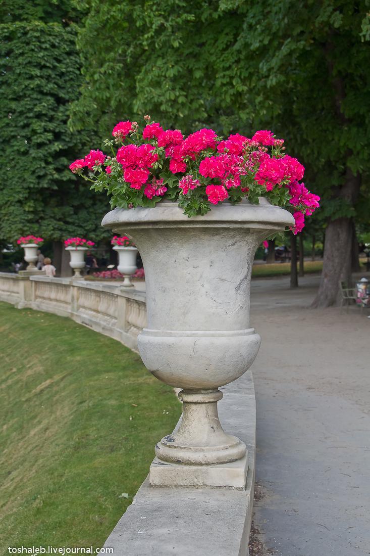 Люксембургские сады-24