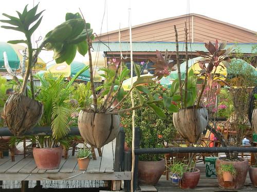 Phnom Penh-Lac Boeng Kak (3)